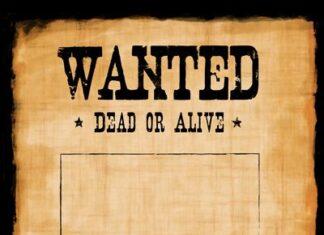 wanted, pallottole e magia